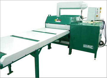 SELECT Board Edger Outfeed